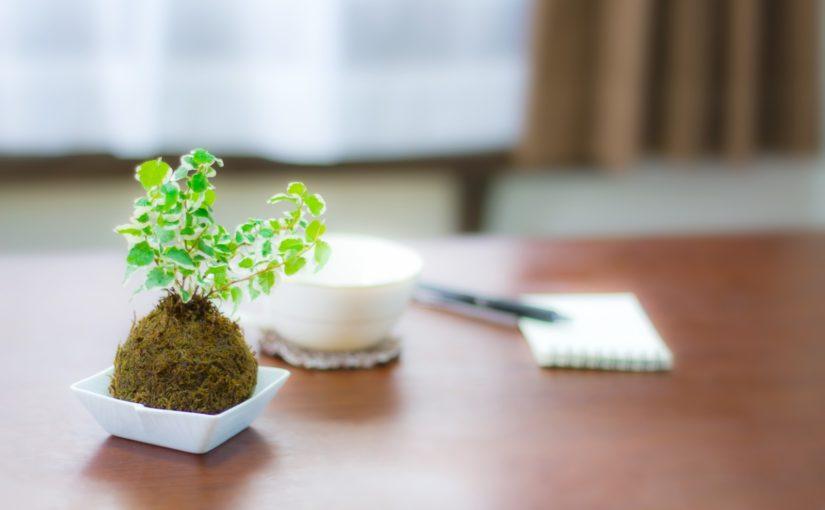 お茶カフェを開くということ~筆者の経験に基づくお茶カフェ経営~