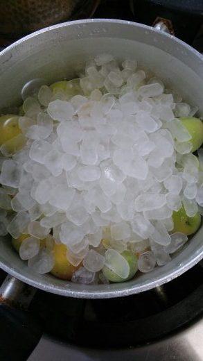 梅に氷砂糖