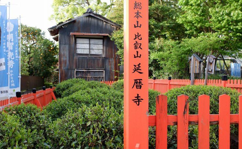 旅の思い出2019年5月-日本最古と言われる日吉茶園-