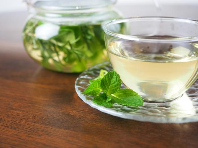 茶からサルモネラ菌が検出された?!茶のリコール